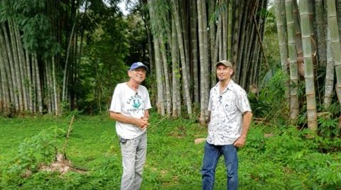 Bio-Ferments, Water Filtration, and Some Really Big Bambu (Ed Bernhardt: New Dawn Center)