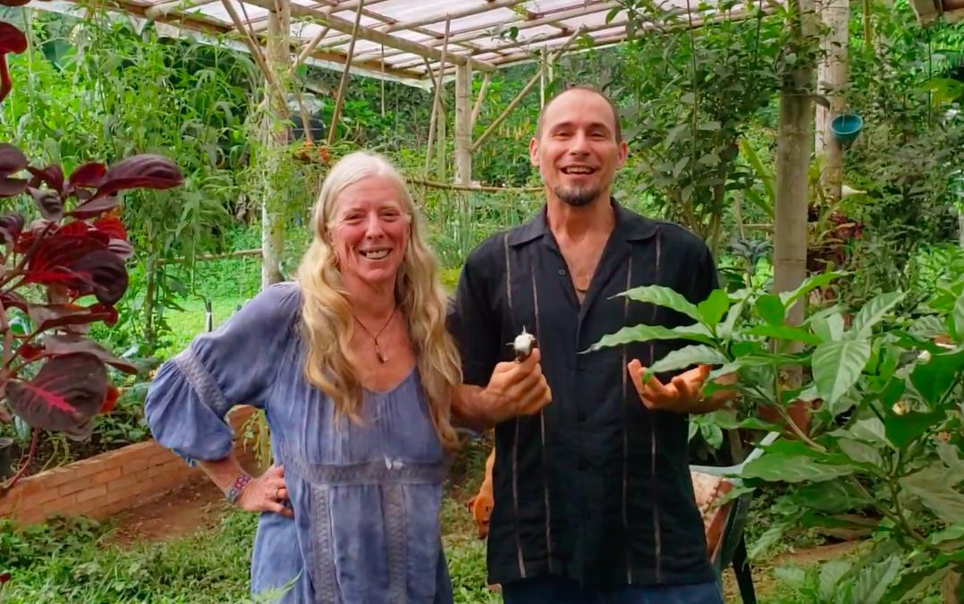 Greenhouses, Volunteers, & Vanilla Bean Propagation (Suzanna Leff: Finca Amrta)