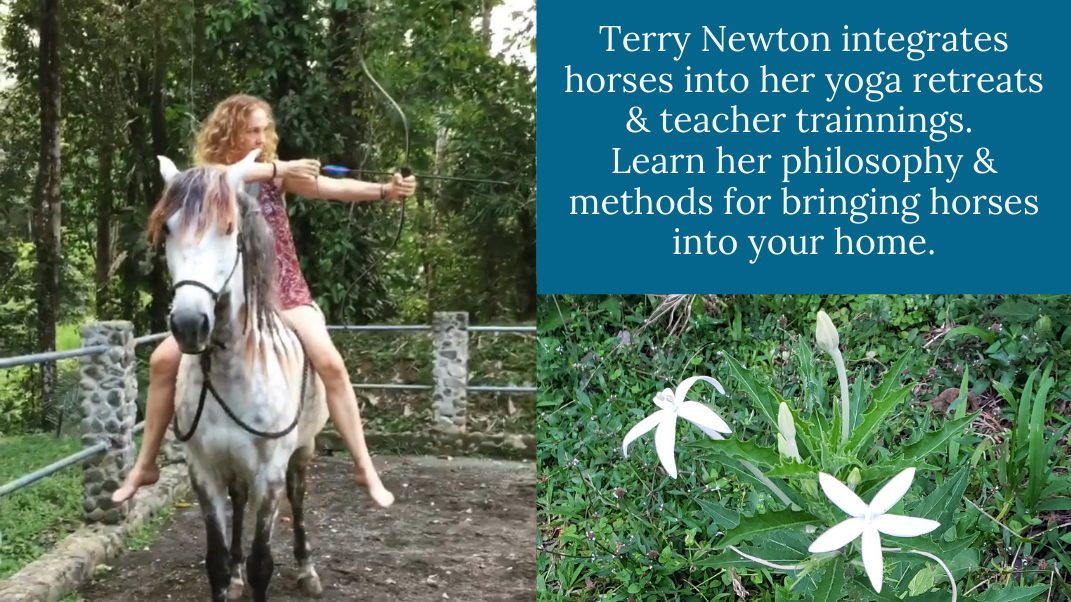 #008 Terry Lillian Newton of Kindred Spirits: Raising Horses using Permaculture and Mindfulness