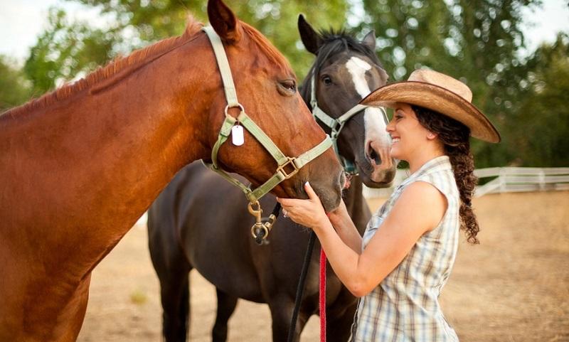 raising horses in the community